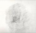 drawing 71297